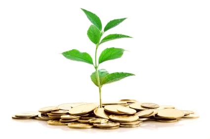 Image result for cash growing  uk